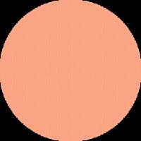 Umschlag_struktur-coralle