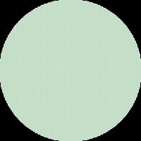 Umschlag_struktur-minze