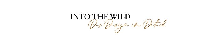 into-the-wild-800x160